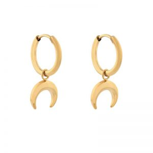 Earrings minimalistic horn gold