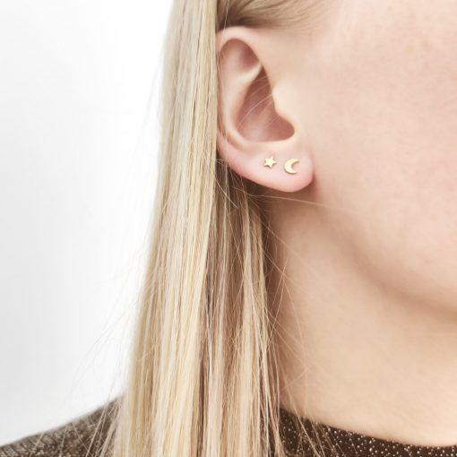 Stud earrings moon